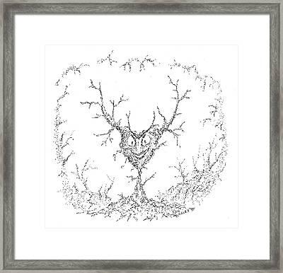 Wicked Heart Framed Print by Dan Haley