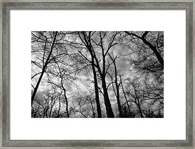 Wicked-spooky Framed Print by Kelly Kitchens