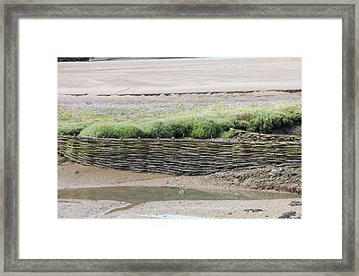 Wicker Bank Framed Print by Ashley Cooper