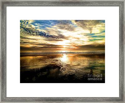 Wide Open Framed Print by Margie Amberge