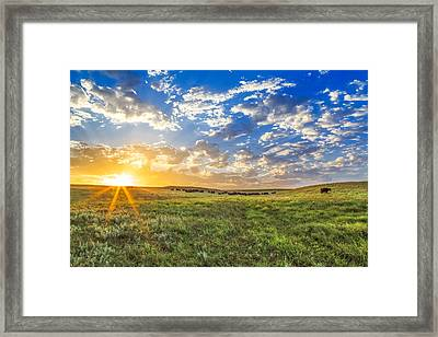 Wide Open Spaces Framed Print by Jill Van Doren Rolo