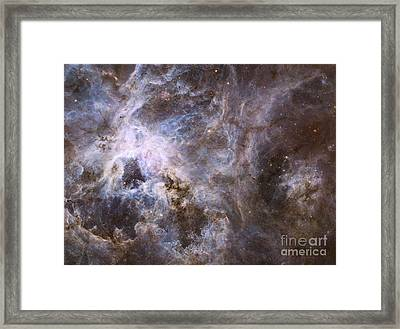 Widefield View Of The Tarantula Nebula Framed Print by Stocktrek Images