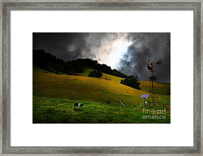 Wilbur The Pig Goes Home - 5d21059 Framed Print by Wingsdomain Art and Photography
