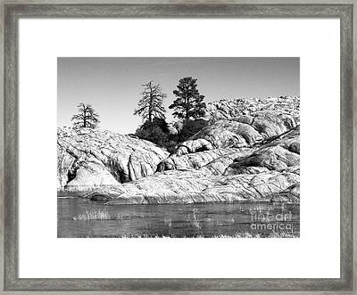 Willow Lake Number One Bw Framed Print by Heather Kirk