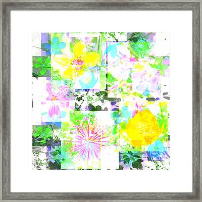 Wild About Flowers Framed Print by Barbara Moignard