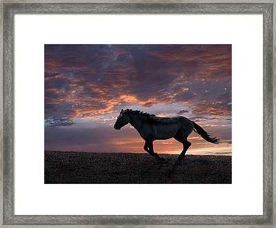 Wild And Free Framed Print by Leland D Howard