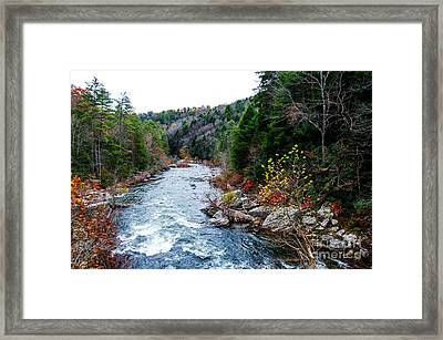 Wild And Scenic Obed River Framed Print
