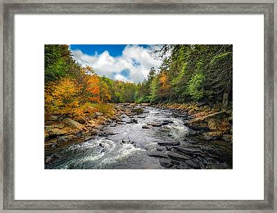 Wild Appalachian River Framed Print