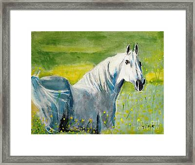Wild As The Wind Framed Print by Judy Kay