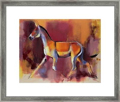 Wild Ass, Rann Of Kutch Framed Print by Mark Adlington