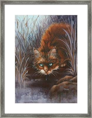 Wild At Heart Framed Print by Cynthia House