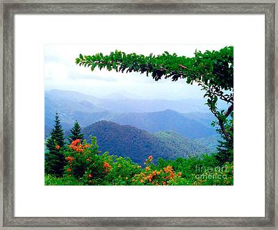 Wild Azalea View Framed Print by Annlynn Ward