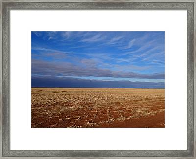 Framed Print featuring the photograph Wild Blue by Tom DiFrancesca