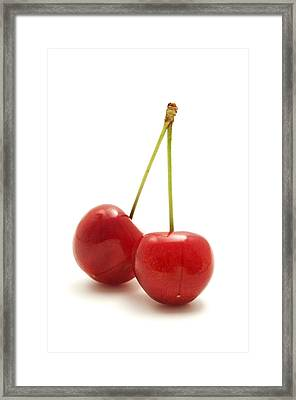 Wild Cherry Framed Print