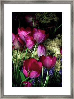 Wild Crazy Beautiful Tulip Garden Framed Print