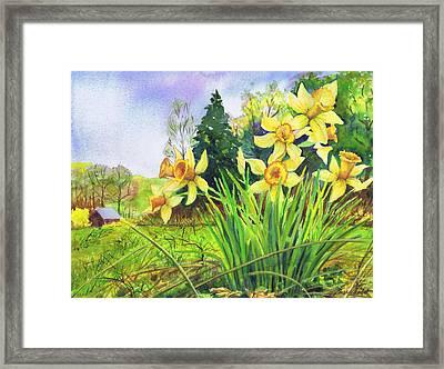 Wild Daffodils Framed Print