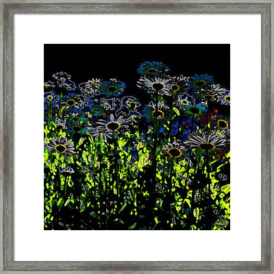 Wild Daisies Iv Framed Print by David Patterson