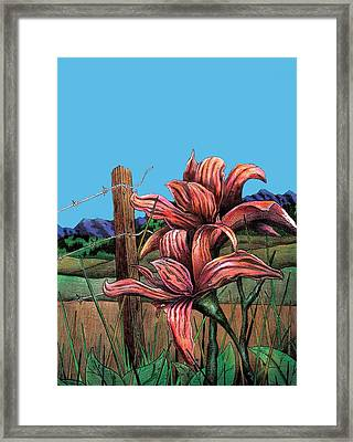 Wild Day Lily Framed Print