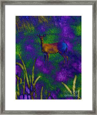 Wild Deer Framed Print by Minding My  Visions by Adri and Ray