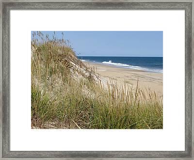 Wild Dune Framed Print