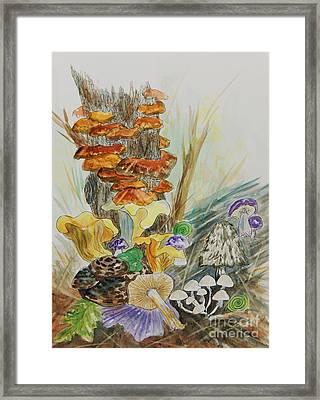 Wild Edible Mushrooms Framed Print by Ellen Levinson