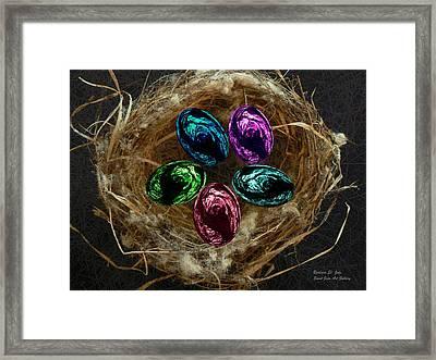 Wild Eggs In My Nest Framed Print