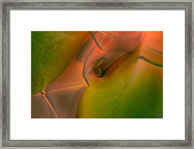 Framed Print featuring the photograph Wild Eyes by Omaste Witkowski