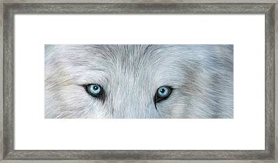 Wild Eyes - White Wolf Framed Print
