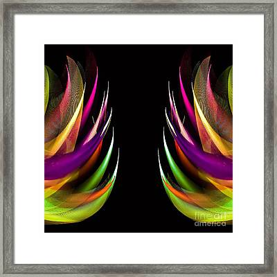 Wild Feathers Framed Print