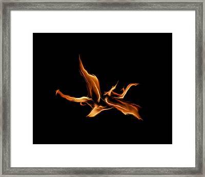 Wild Fire Framed Print