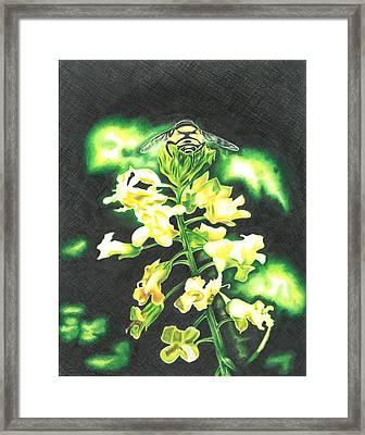 Wild Flower Framed Print by Troy Levesque