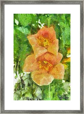 Wild Flowers Framed Print by Jeff Kolker