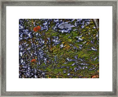Wild Flowers Framed Print by Larry Capra