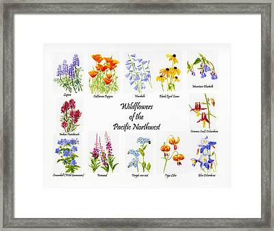 Wild Flowers Of The Pacific Northwest Poster Framed Print