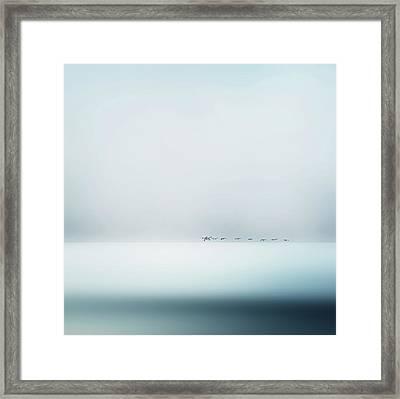 Wild Geese Framed Print