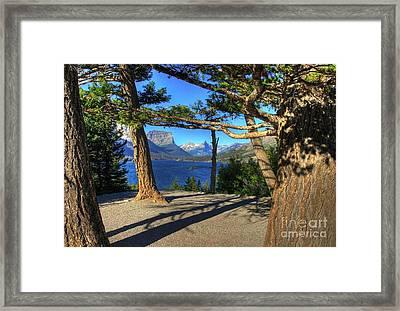 Wild Goose Island 2 Framed Print by Mel Steinhauer