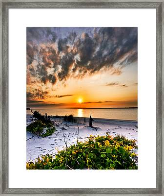 Wild Grape Sunset Orange Sun Beach White Sand Landscape Art Framed Print by Eszra