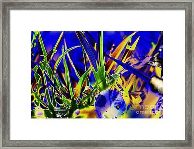 Wild Grass 4 Framed Print by Carol Lynch