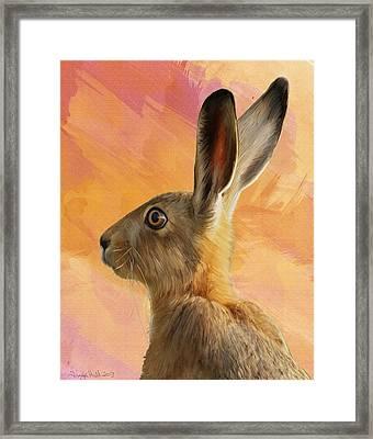 Wild Hare Framed Print