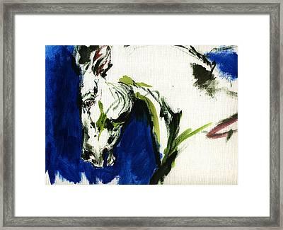 Wild Horse Framed Print by Angel  Tarantella