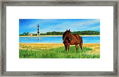Wild Horse Near Cape Lookout Lighthouse Framed Print