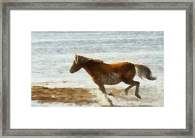 Wild Horse Running Through Water Framed Print by Dan Sproul