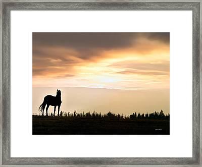 Wild Horse Sunset Framed Print