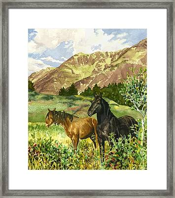 Wild Horses Framed Print by Anne Gifford