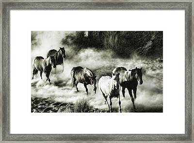 Wild Hosses Re Edited  Framed Print