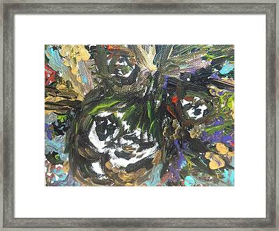 Wild Innocence Framed Print by Amy Drago