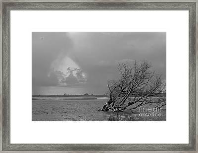 Wild Landscape Framed Print