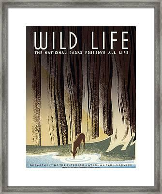 Wild Life Poster, C1940 Framed Print by Granger