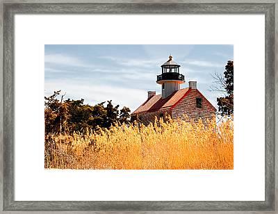 Wild Lighthouse Framed Print