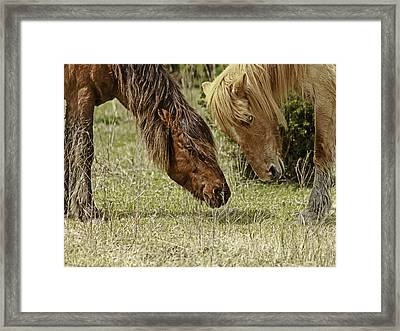 Wild Love Framed Print